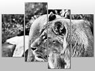 LIONESS BIG CAT BLACK & WHITE LARGE SPLIT PANEL 4 PANEL CANVAS WALL ART IMAGE
