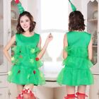 Christmas Womens Ladies Sexy Xmas Girls Santa Cosplay Party Fancy Dress Costume