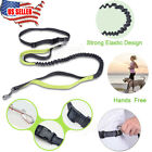 Pet Dog HandsFree Waist Strap Leash Walking Running Buffer Traction Bungee Rope