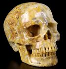 """Huge 5.2"""" CRAZY LACE AGATE Carved Crystal Skull, Super Realistic, Healing #631"""