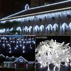 US White 96-1000LED Curtain Icicle Musts Fairy Highlight reveal Open-air Xmas Romp Tree LA