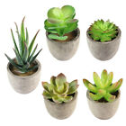 Artificial Succulent Plant Mini Potted Fake Plastic Flowers Landscape Home Decor