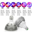 E27 Full Spectrum Plant Grow Light Lamp for Indoor Garden Greenhouse Hydroponic