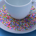 Polymer Clay Fake Ceramic Bread Crumbs Sprinkles Phone Decor 5/10/50g-Soft image