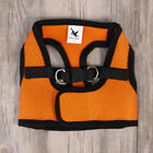 Breathable Cat Harness Innovative Pet Halter Harness with Padded Panels for Dogs