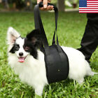 Dog Lift Harness Support Rehabilitation Injury Hip Assist Aid Sling Pet Carrier