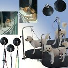 Pet Dog Cat Harness Holder Line Grooming Table Arm Noose Loop Restraint Rope S/L