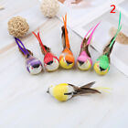 Artificial feather birds nest decorative mini swallows home garden ornamentA Al