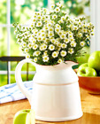 Country Home Decor Flower Vase Kitchen Dining Table Centerpiece White Red Teal