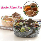 Creative Flower Planter Garden Herb Succulent Plant Resin Pot Box Container