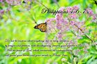 Beautiful Nature Canvas w/ Uplifting Scriptures (Available in English & Spanish)