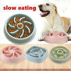 Feeding Pets Supplies Plastic Slow Eating Bowls Food Dish Dog Bowl Puppy Feeder