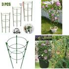 Tomato Cage Plant Support Ring Garden Trellis Flower Iron Support Climbing Plant