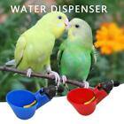 Poultry Water Drinking Cups Plastic Automatic Drinker Bird Chicken Coop Feed