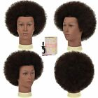 Short Hair Afro Kinky Curly Heat Resistant Synthetic Wigs for Women Mixed Brown