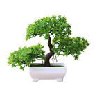 Artificial Bonsai Potted Plant Guest Greeting Pine Tree Home Office Decor Gift