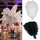 Black&white Large Natural Ostrich Feathers Plume Crafts Wedding Party Decoration