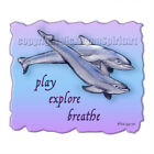 Dolphin Medicine Totem Spirit Animal Breathe T-Shirt