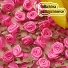 Hot Pink Polyester Ribbon Roses Leaf 15mm Appliques Scrapbooking Sewing JMPSL07
