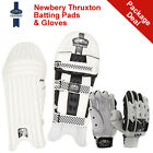 *NEW* NEWBERY THRUXTON CRICKET BATTING PADS AND GLOVES PACKAGE, RRP £165