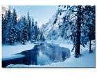 YOSEMITE NATIONAL PARK SNOW SCENE CALIFORNIA PHOTO WALL ART CANVAS PRINT PICTURE