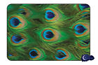 Peacock Feathers, Animal Print - Tempered Glass Bar & Kitchen Cutting Board
