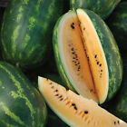 'Tendersweet Orange' Watermelon - Sweet Orange Flesh...Mmmmmmm..Good!! Free Ship