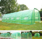 Large Portable Greenhouse Tunnel Design Walk-In Garden Hot Green House w/ Window