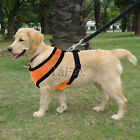 Brand New High Quality Pet Puppy Dog Adjustable Harness Collar Safety Strap Vest
