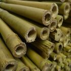 7ft Yuzet Heavy Duty garden Canes Bamboo cane strong plant support trellis