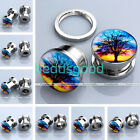 Pair Life Tree Painting Stainless Steel Screwed Flesh Ear Plugs Tunnels Expander