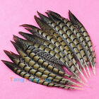 Lots 10~100pcs Decor Natural Pheasants Tail Feathers 20-25cm / 7.9-9.8 Inch DIY