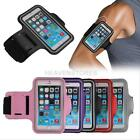 Premium Cycling Running Sports Gym Armband Case for Apple iPhone 6 Plus 5.5inch