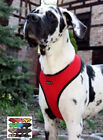 """XXL Puppia Dog Harness Soft Mesh Large Big Breeds Up to 40""""Chest 2"""" Secure Strap"""