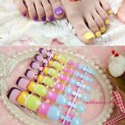Show Your Toes Colorful Carnival Style Candy Black False Toes Toenails 20 Color
