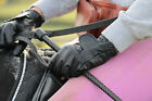 GABRETTA Leather Equestrian Horse riding gloves with option to Personalise BLACK