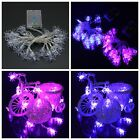 20 LED Halloween Party Spooky Spider Fairy Party String Light Battery Operated