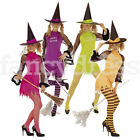 Ladies Womens Spicy Sexy Witch Costume Outfit Halloween Fancy Dress NEW