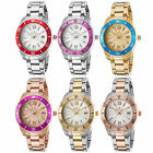 Invicta Women's Pro Diver Stainless Steel with Colored Bezel Watch