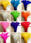 5-100 pcs perfect Cute rooster tail feathers 10-12 inches / 25-30 cm