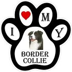 Border Collie Dog Paw Decal / Sticker