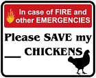 In Case of Fire Save My Chickens Decals / Stickers