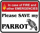 In Case of Fire Save My Parrot Decals / Stickers