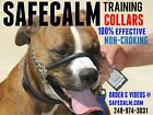 SafeCalm Dog Training Collar (X-SM - SM $28.99)  (Med - XL $39.99)  (XXL $58.99)