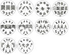 Nail Art Stamp Stamping Image Template Plate A Series 6 (A41 - A50) *** NEW ***