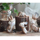 Vivid Rabbit Garden Miniature Home Living Room Decor Figurine Art Work Ornament