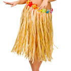 Ladies Hula Skirt 60cm Outfit Accessory for Hawiian Fancy Dress Womens