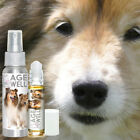 THE BLISSFUL DOG SHETLAND SHEEPDOG AGE WELL DOG AROMATHERAPY FOR SENIOR SUPPORT