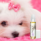 Is Your Maltese Afraid of Thunderstorms? Fireworks? Try Relax Dog Aromatherapy