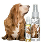 THE BLISSFUL DOG BASSET HOUND AGE WELL DOG AROMATHERAPY SENIOR EMOTIONAL SUPPORT
